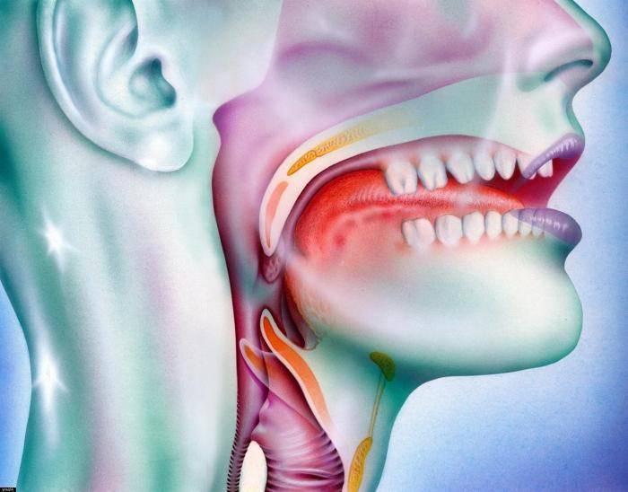 Кибер-нож – назофарингеальная карцинома