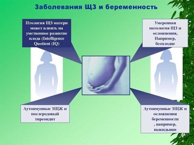 Как заболевания щитовидной железы вызывают бесплодие