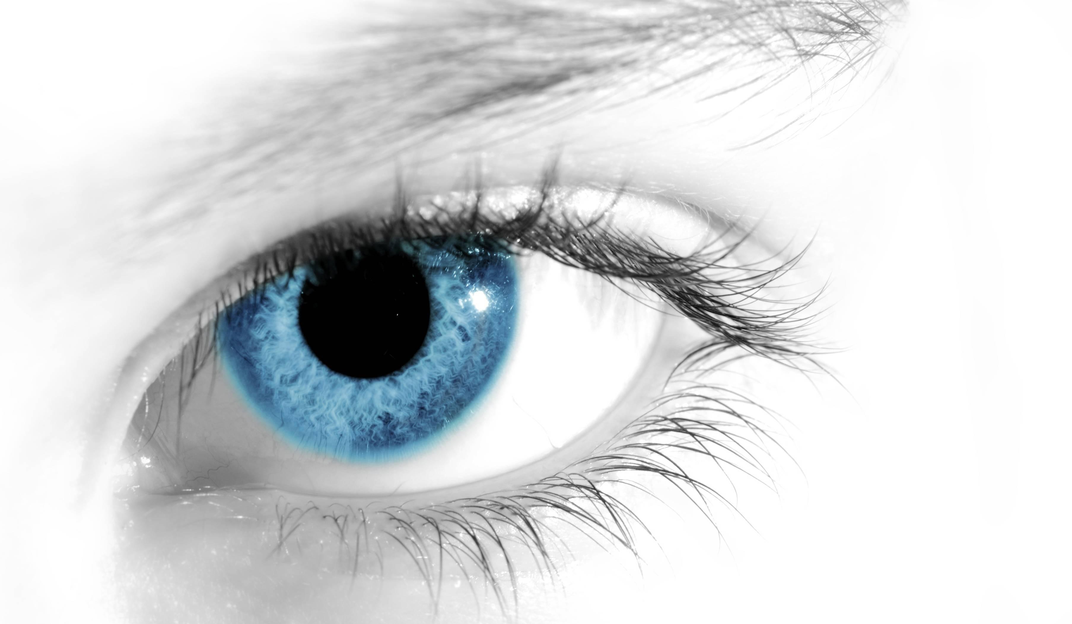 Сколько кадров в секунду видит человеческий глаз?