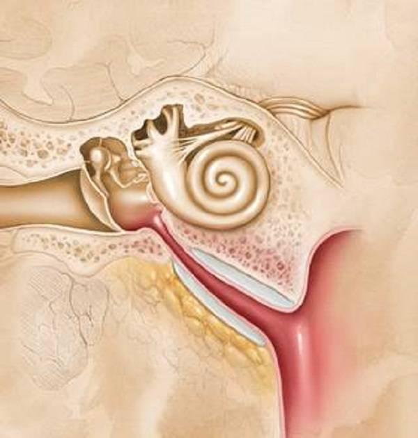 Острый тубоотит: основные симптомы, лечение, осложнения