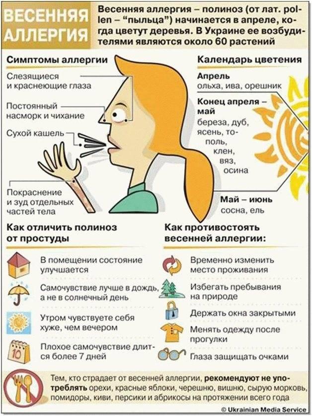 Простудный насморк или аллергический ринит: как определить причину