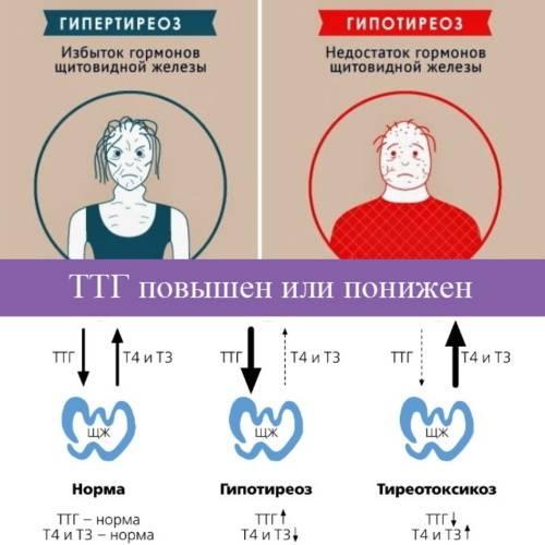 """Что мы еще не знали про ожирение. часть1 """"эра до биоимпеданса"""""""
