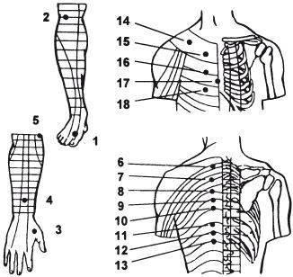 Массаж при межреберной невралгии: техника выполнения точечного и классического метода