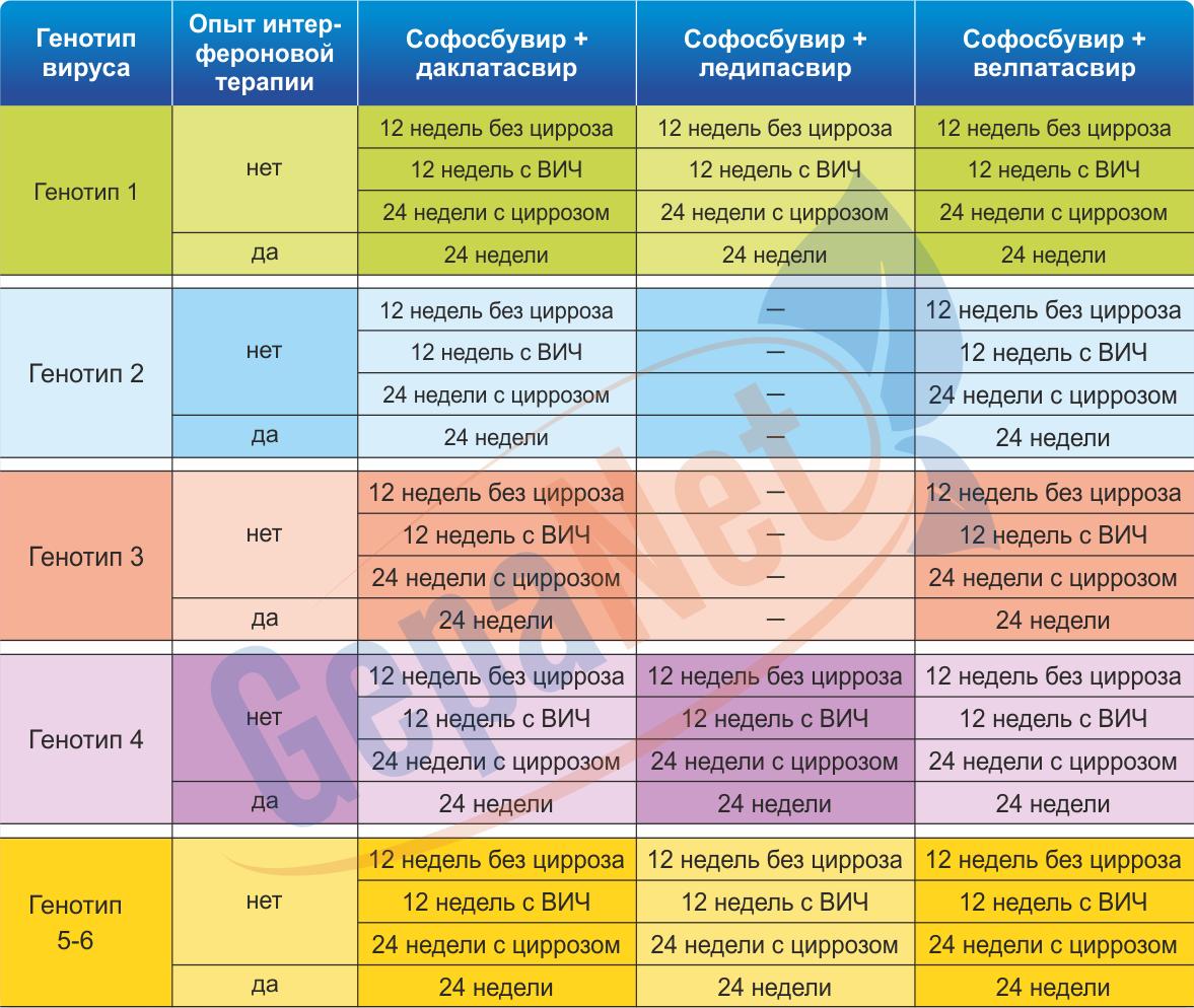 Лечение и симптомы гепатита с с генотипом 3а и 3b