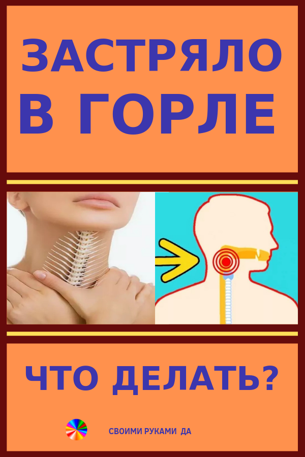 Ощущение кома в горле после еды: причины появления