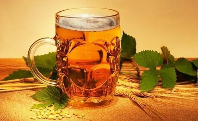 Употребление теплого пива для лечения кашля