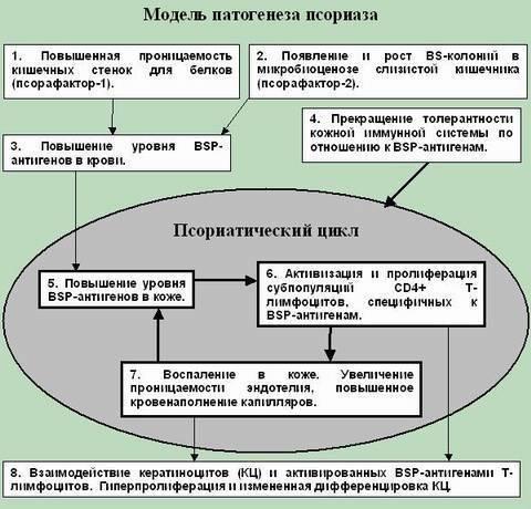 этиология псориаза