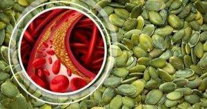 Семечки подсолнечника и холестерин - про холестерин