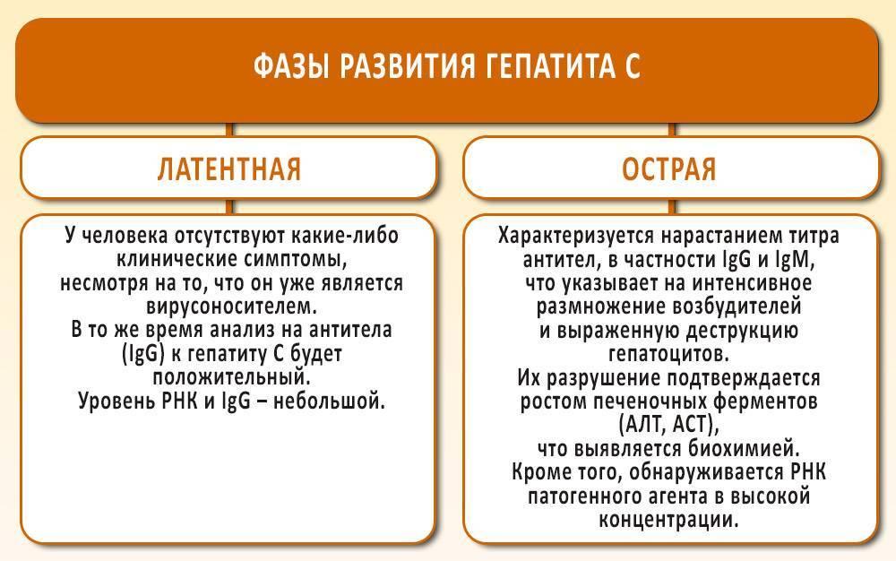 антиген s вируса гепатита в