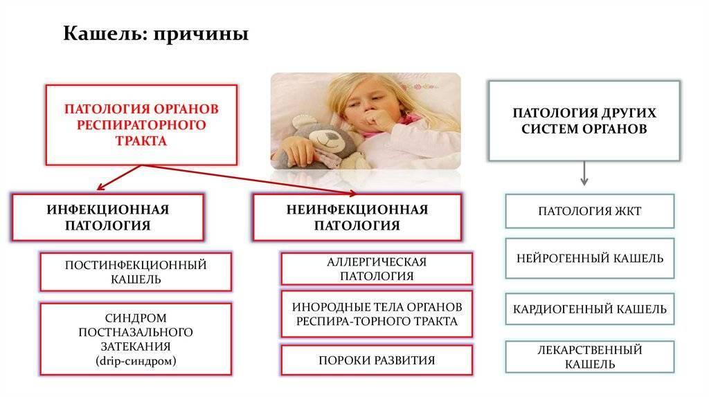 кашель у взрослого причины