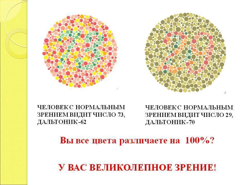 сколько цветов различает человеческий глаз