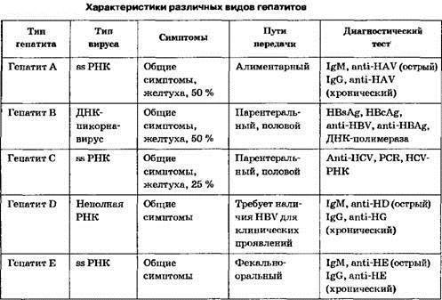 количественный анализ гепатита с
