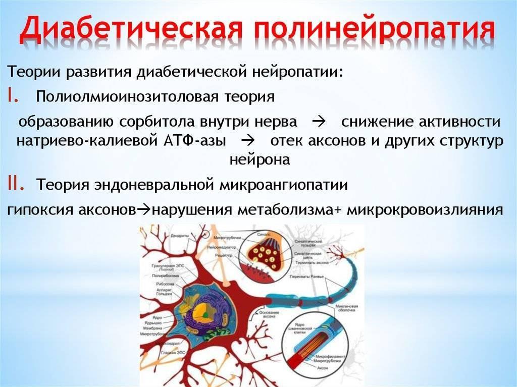 диабетическая полинейропатия лечение препараты