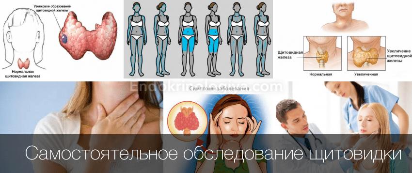 Как проверить свою щитовидку с помощью градусника