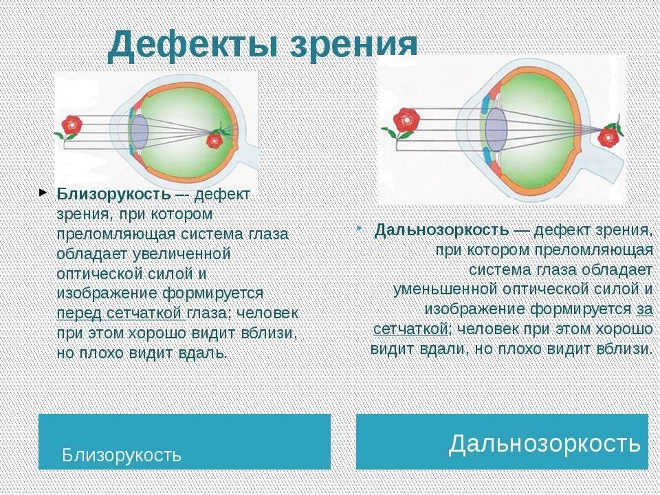 Дальнозоркость или близорукость: отличия, сходства, лечение, профилактика