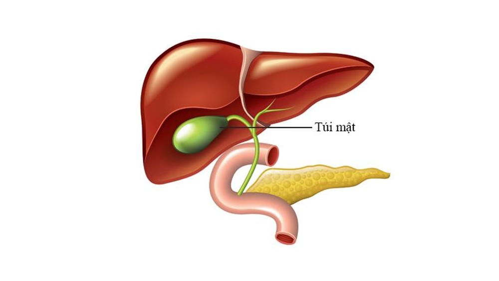 холецистит панкреатит симптомы