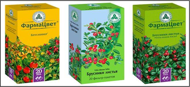Листья брусники при цистите — полезные свойства, применение и отзывы