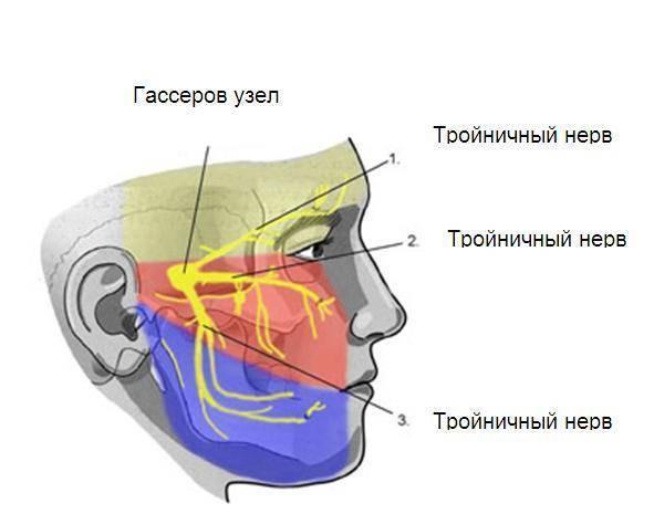 Нейропатия малоберцового нерва, ее причины и способы лечения