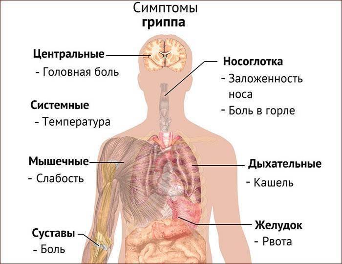 Насморк и температура у ребенка: причины и симптоматика недуга у детей