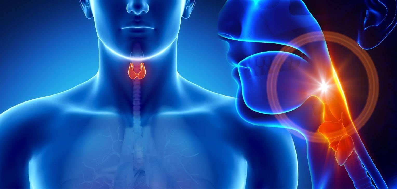 врач щитовидной железы как называется