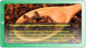 Гвоздика от паразитов