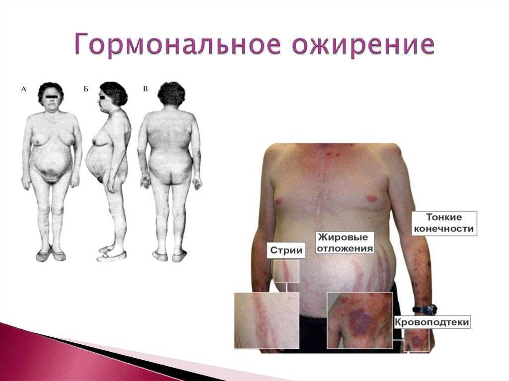 селен и щитовидная железа