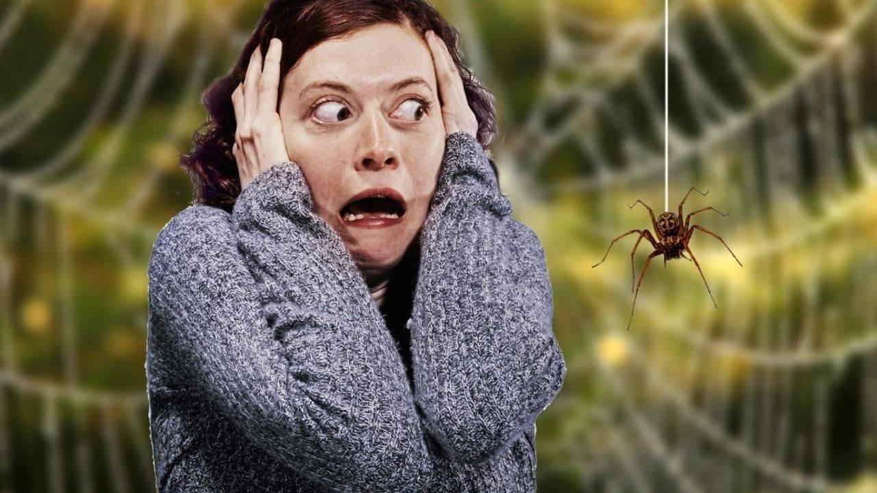 боязнь насекомых как называется фобия