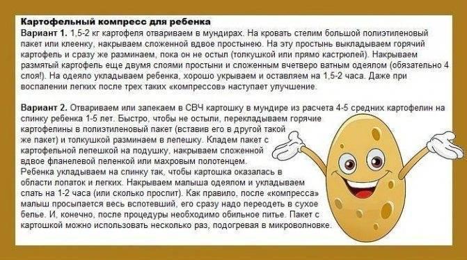 Лепешка от кашля для детей и взрослых: медовая, картофельная, горчичная