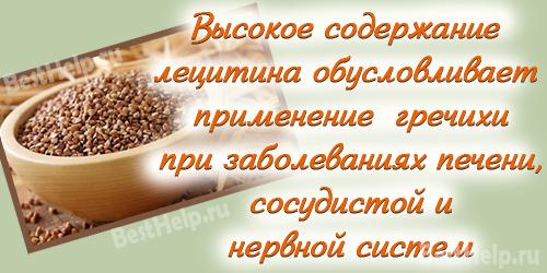 Очищение печени гречкой