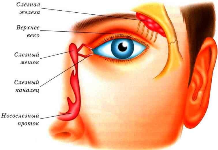 Воспаление слезной железы у взрослых лечение