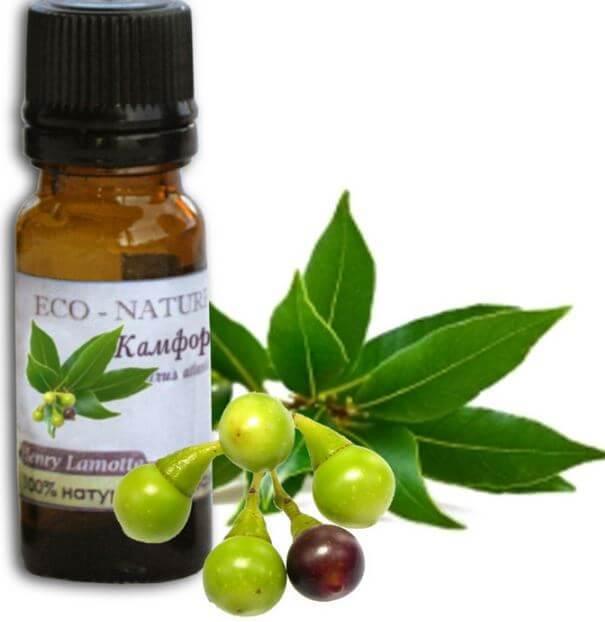 чайное дерево эфирное масло применение при насморке