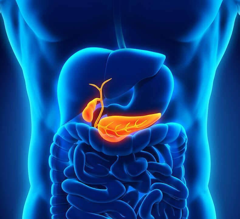 Причины, симптомы и лечение панкреатита и холецистита