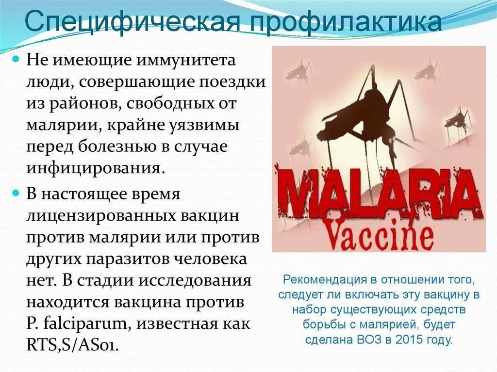 малярийный плазмодий профилактика