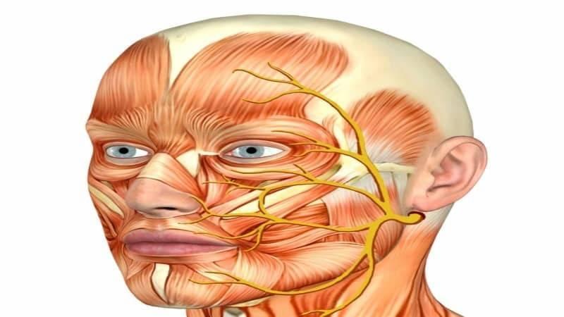 невралгия затылочного нерва симптомы лечение