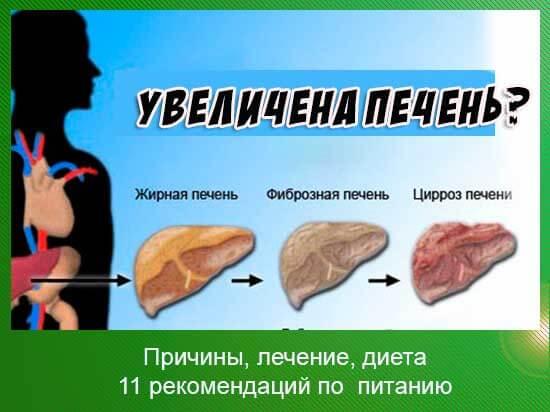 увеличенная печень лечение народными средствами