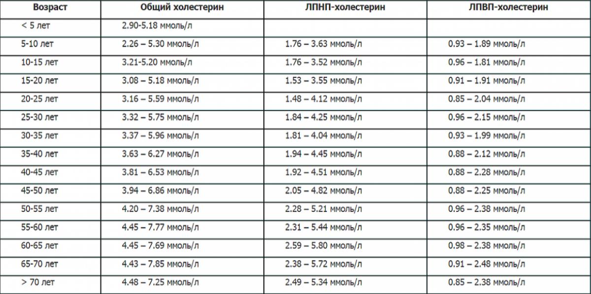 Нормы холестерина у женщин и мужчин. кому принимать статины, а кому садиться на диету