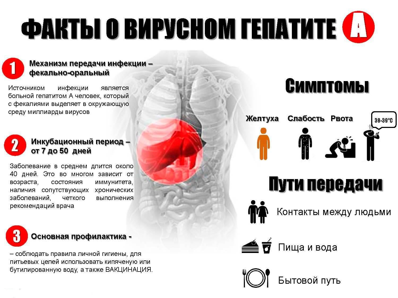 гепатит а признаки симптомы