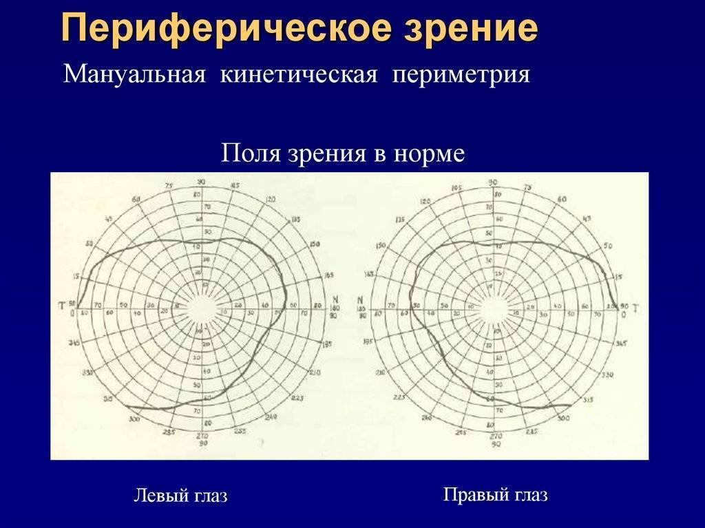 Особенности и возможные заболевания периферического зрения