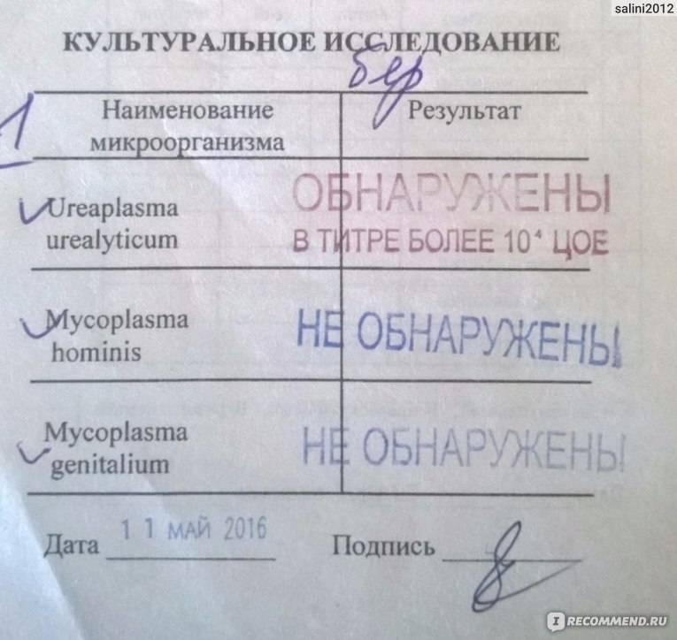 Девочки кто через сколько забеременел после уреаплазмы? - запись пользователя алеся (id1124583) в сообществе зачатие в категории инфекции - babyblog.ru