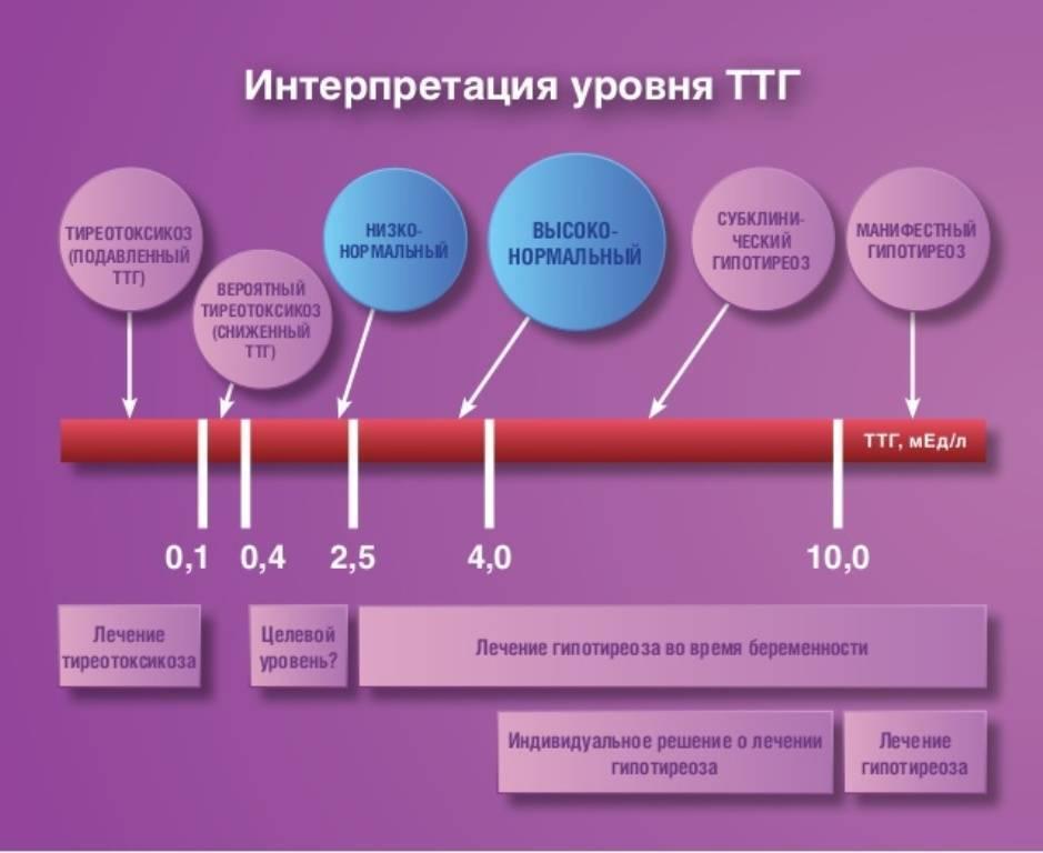 повышен тиреотропный гормон