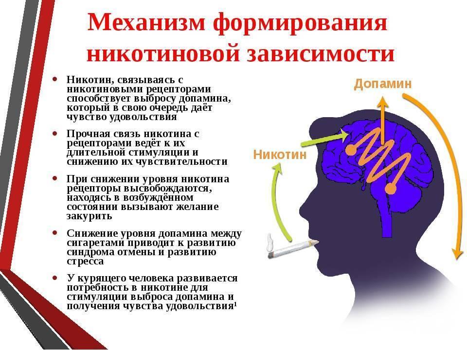 зависимость от табака