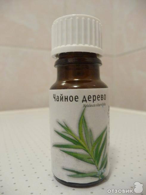 Лечение маслом чайного дерева от прыщей молочницы грибка насморка
