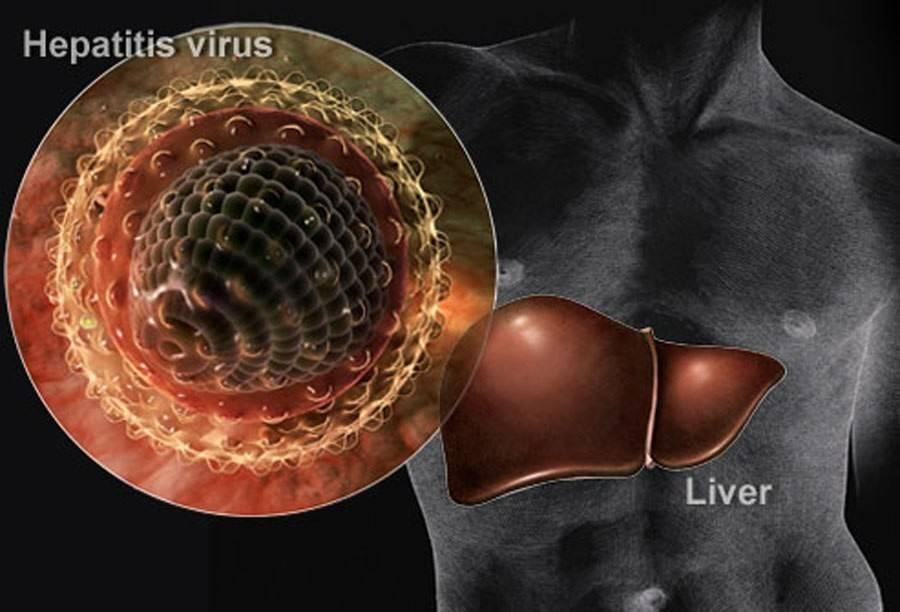 гепатит д что єто за болезнь