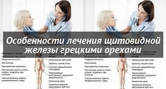 грецкие перегородки от щитовидки