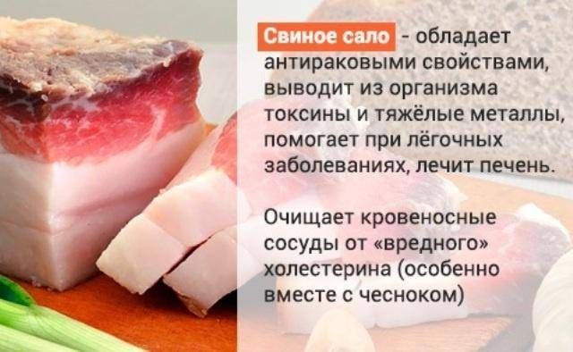 свиное сало и холестерин