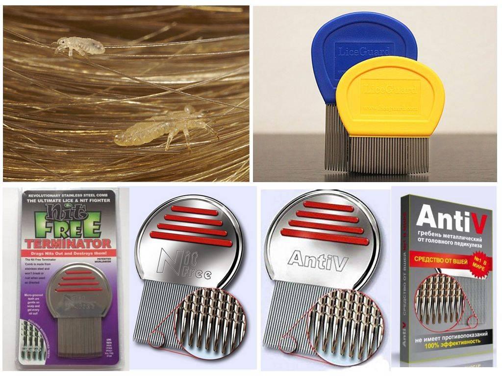 Эффективно и доступно — различные вариации гребня от вшей и гнид