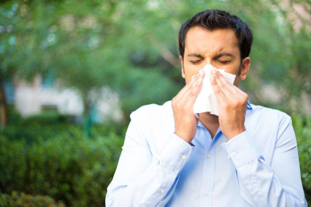 лечение аллергического круглогодичного ринита