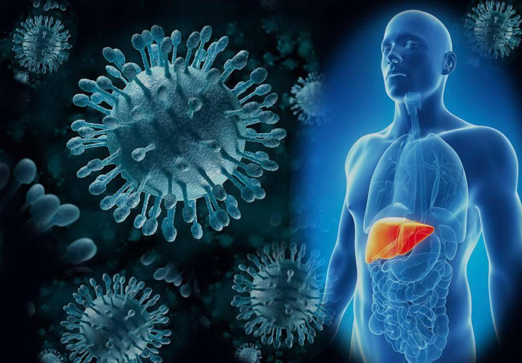 Температура при гепатите: может ли быть и что делать
