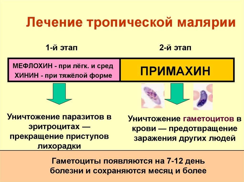 препараты от малярии