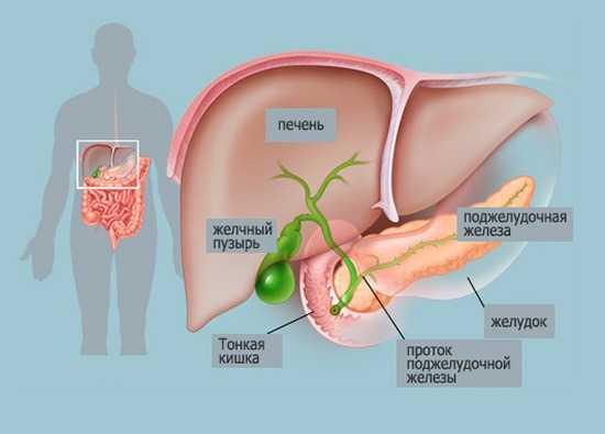 киста в желчном пузыре симптомы